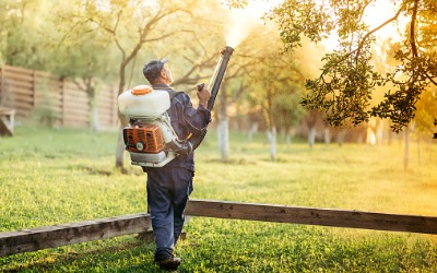 Man spraying trees for mosquitos as a part of Mosquito Companies in Peoria IL